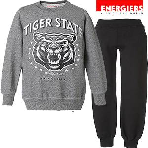 ����� Tiger State ENERGIERS